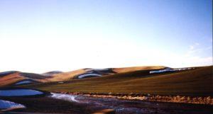 pallouse idaho excavation wheat field