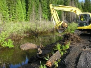 forest service projects by Hatter Creek Earthworks Princeton Idaho