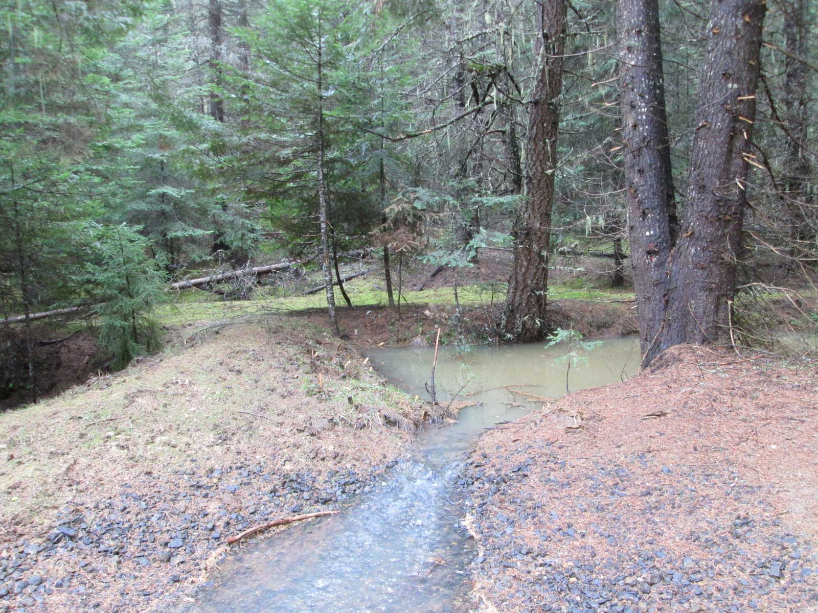 Stream Conservation by Hatter Creek Earthworks