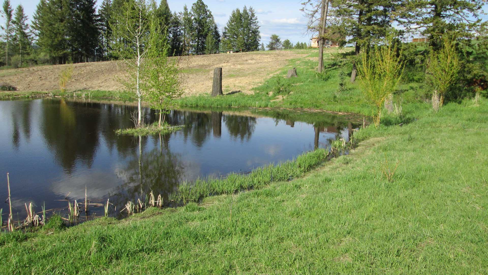Image of idaho pond construction hatter creek earthworks for Pond contractors